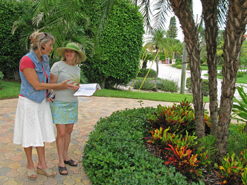 Garden Consultation